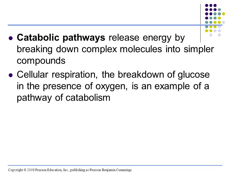 Anabolic pathways consume energy to build complex molecules from simpler ones The synthesis of protein from amino acids is an example of anabolism Bioenergetics is the study of how organisms manage their energy resources Copyright © 2008 Pearson Education, Inc., publishing as Pearson Benjamin Cummings
