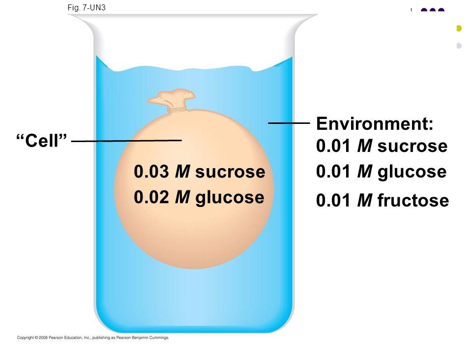 Fig. 7-UN3 Environment: 0.01 M sucrose 0.01 M glucose 0.01 M fructose Cell 0.03 M sucrose 0.02 M glucose