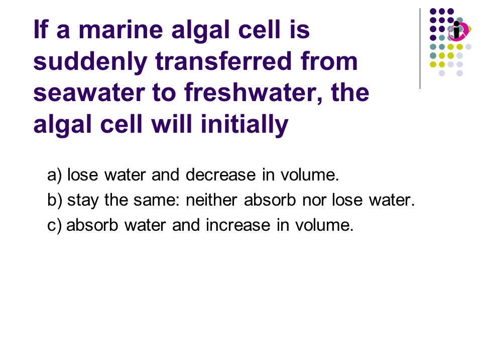 Osmosis If a marine algal cell is suddenly transferred from seawater to freshwater, the algal cell will initially a) lose water and decrease in volume