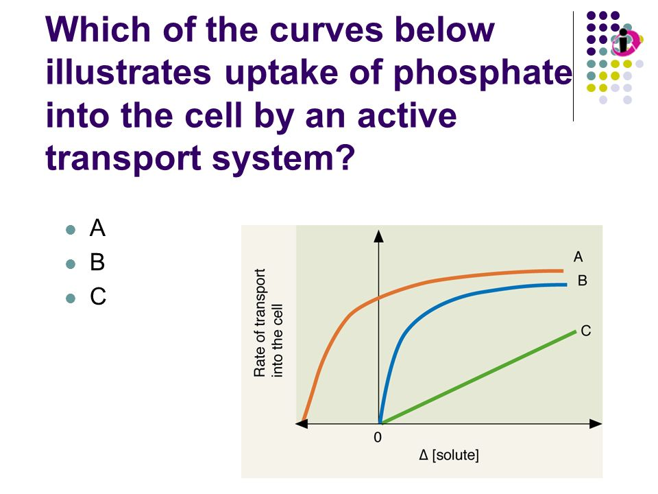 Transport Kinetics: Passive Diffusion Which of the curves below illustrates uptake of phosphate into the cell by an active transport system? A B C