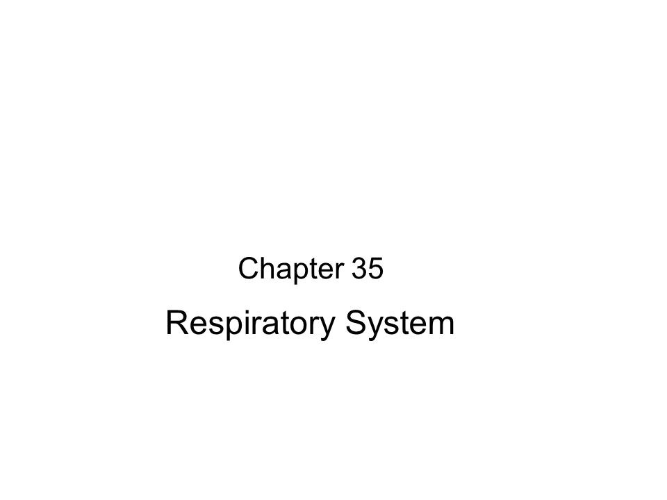 Chapter 35 Respiratory System