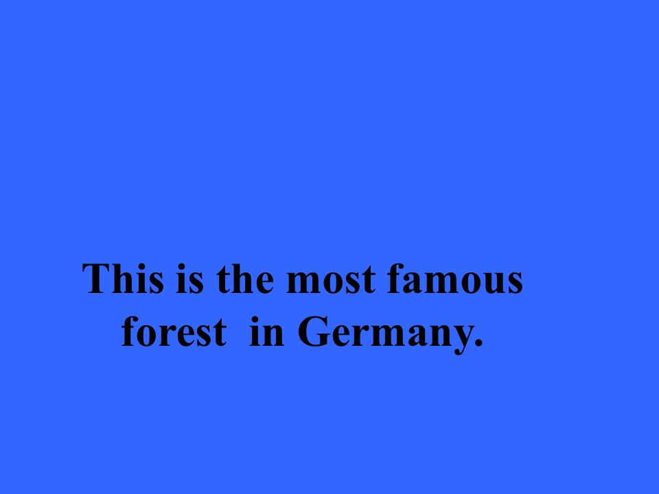 This is the most famous forest in Germany.