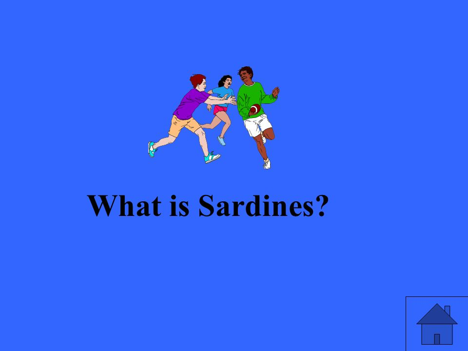 What is Sardines?