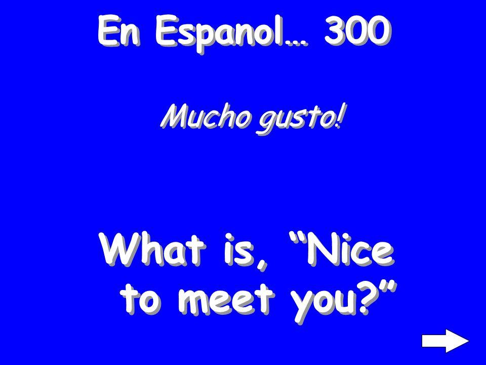 En Espanol… 200 Como te llamas? What is, What is your name?