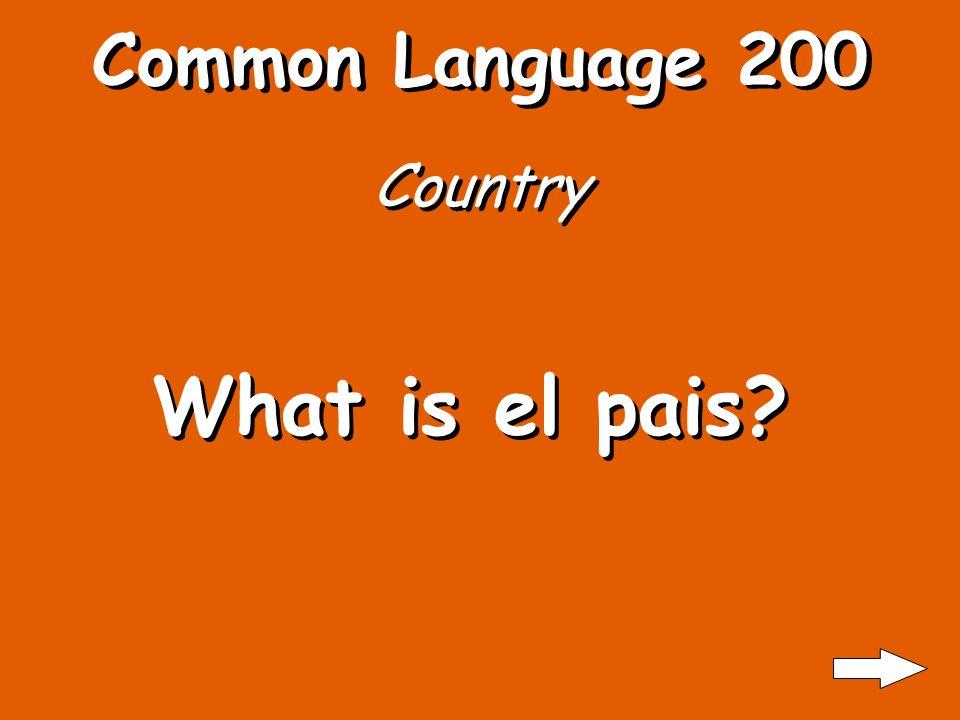 Common Language 100 House What is la casa?