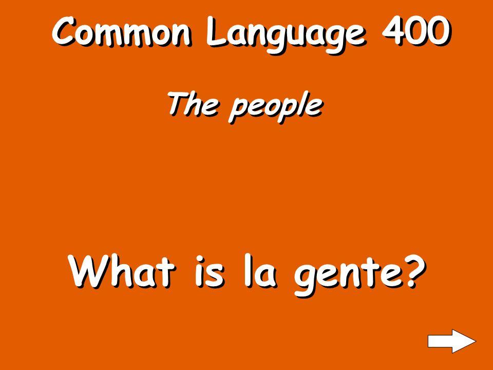 Common Language 300 State What is estado?
