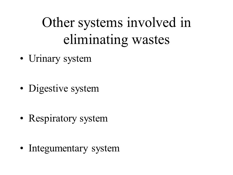 Other systems involved in eliminating wastes Urinary system Digestive system Respiratory system Integumentary system