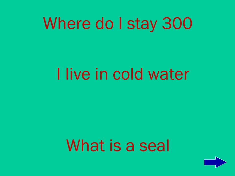 Where do I stay 200 In the winter I sleep in a den What is a polar bear