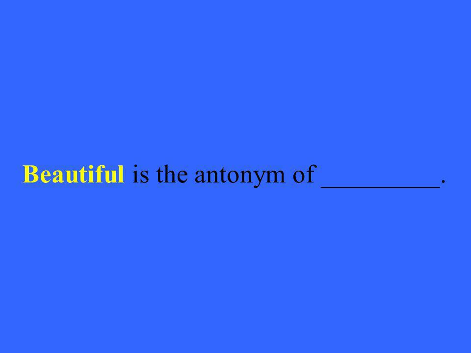 Beautiful is the antonym of _________.