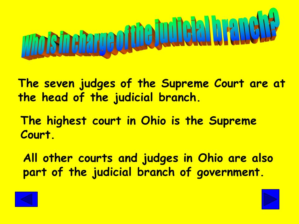 Judicial Branch The job of the judicial branch of government is to interpret the law. This means this branch makes decisions about the law and decides
