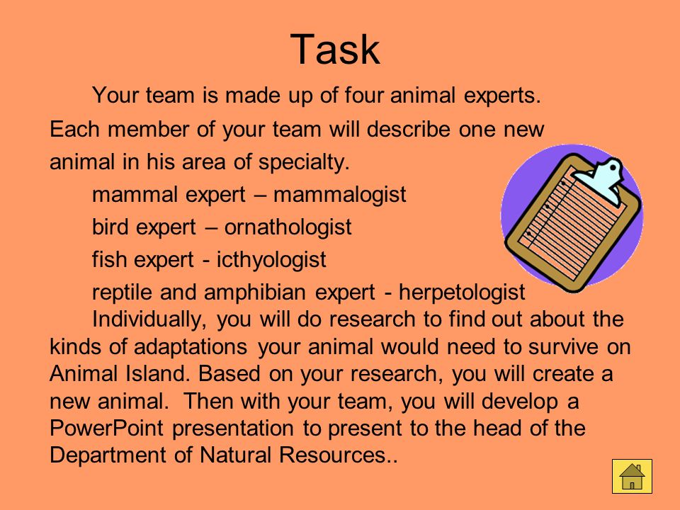 Task Your team is made up of four animal experts. Each member of your team will describe one new animal in his area of specialty. mammal expert – mamm