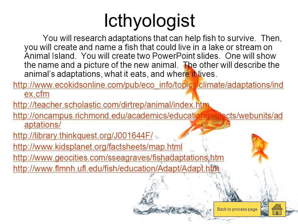 Herpetologist You will research adaptations that can help reptiles and amphibiams to survive.
