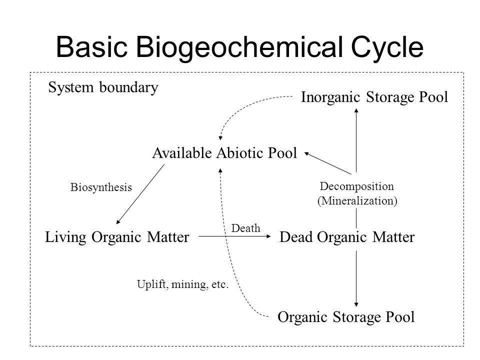 Basic Biogeochemical Cycle Organic Storage Pool Available Abiotic Pool Living Organic Matter Biosynthesis Dead Organic Matter Death Decomposition (Min
