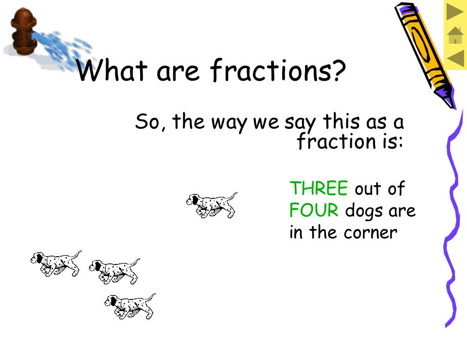THREE dogs are in the corner. What are fractions?