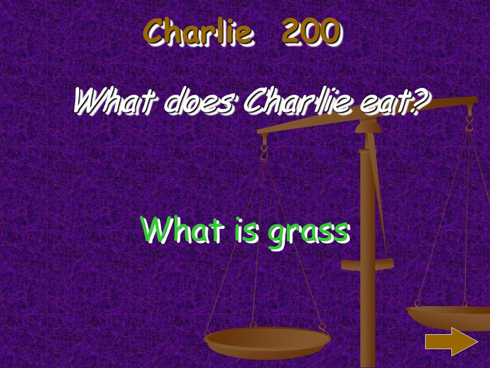 Charlie 100 What was the weather like when Charlie was born What is sunny