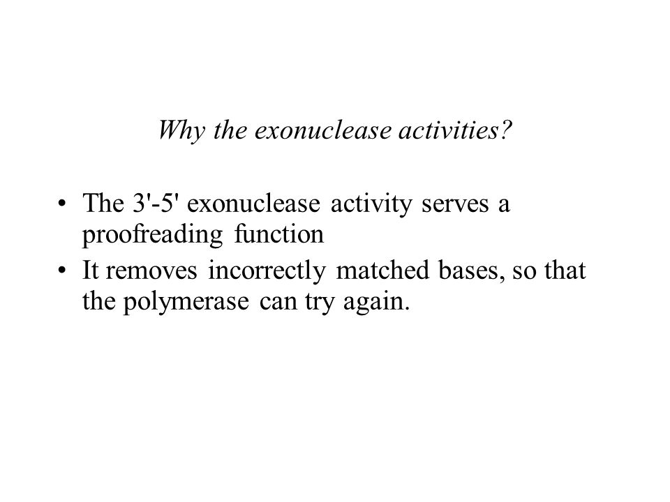 Why the exonuclease activities.