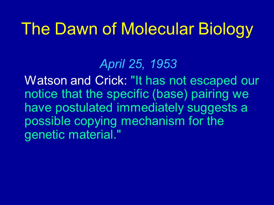 The Enzymology In 1957, Arthur Kornberg demonstrated the existence of a DNA polymerase - DNA polymerase I DNA Polymerase I has THREE different enzymatic activities in a single polypeptide: a 5 to 3 DNA polymerizing activity a 3 to 5 exonuclease activity a 5 to 3 exonuclease activity of DNA Replication