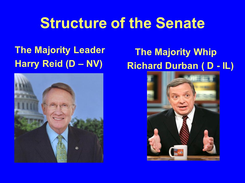 Structure of the Senate The Minority Leader Mitch McConnell ( R - KY) The Minority Whip Jon Kyl (R – AZ)