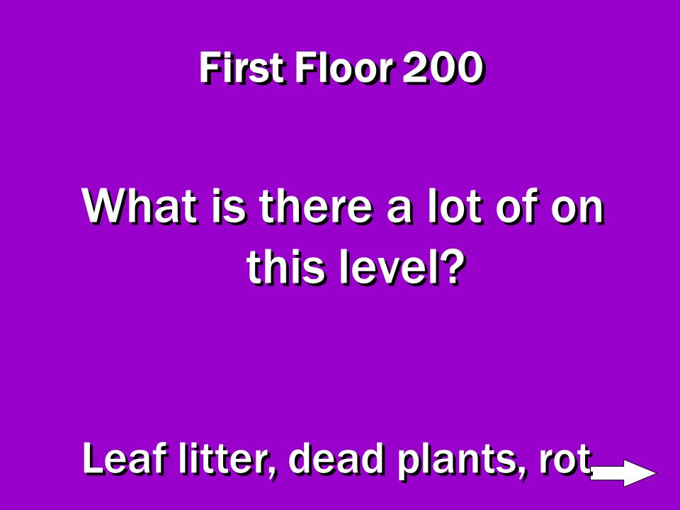 First Floor 100 What do you first see when you look at this level Dark