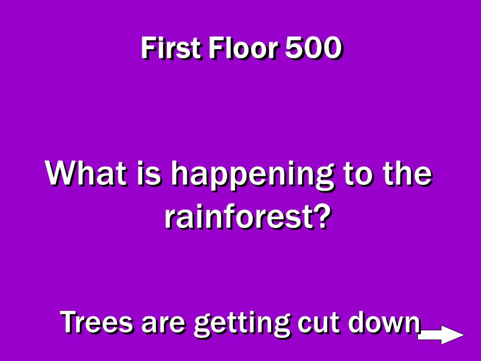 First Floor 400 What other species lives on this level? People