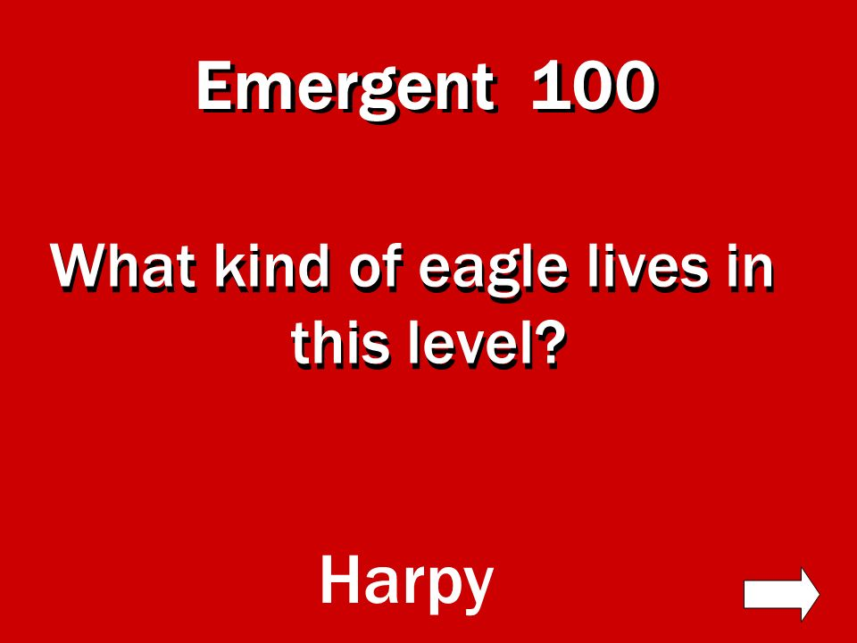 Emergent Canopy 300 400 500 100 200 300 400 500 100 200 300 400 500 100 200 Understory 100 First Floor 200 300 400 500 Exit