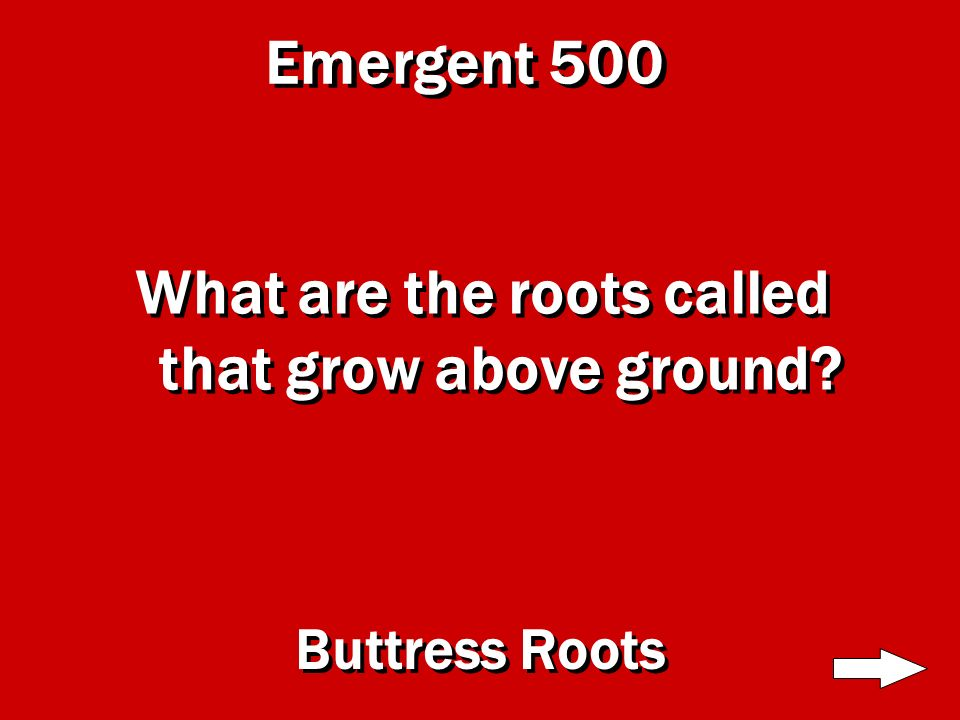 Emergent 400 How tall do the trees in this level grow 300 feet