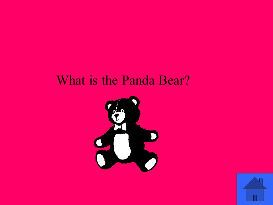 What is the Panda Bear?