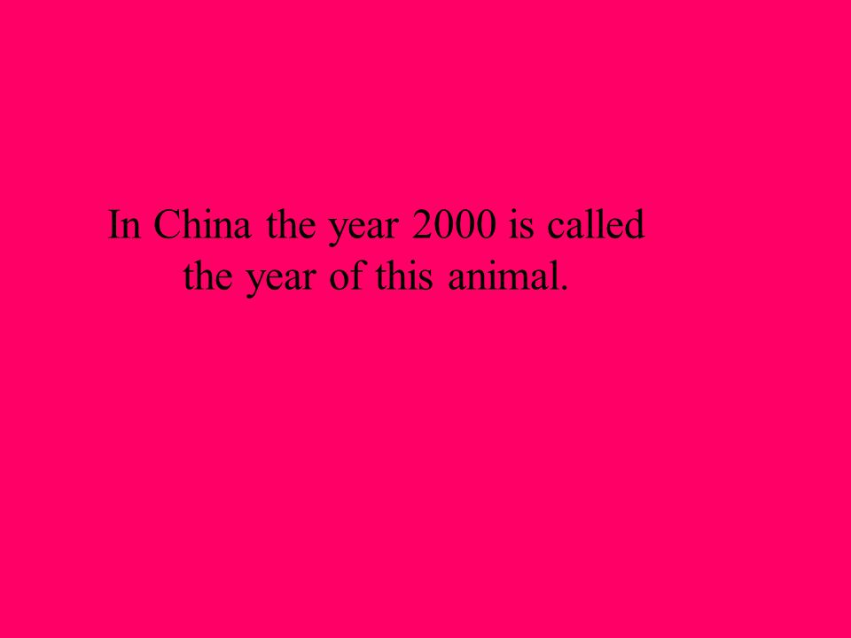 In China the year 2000 is called the year of this animal.