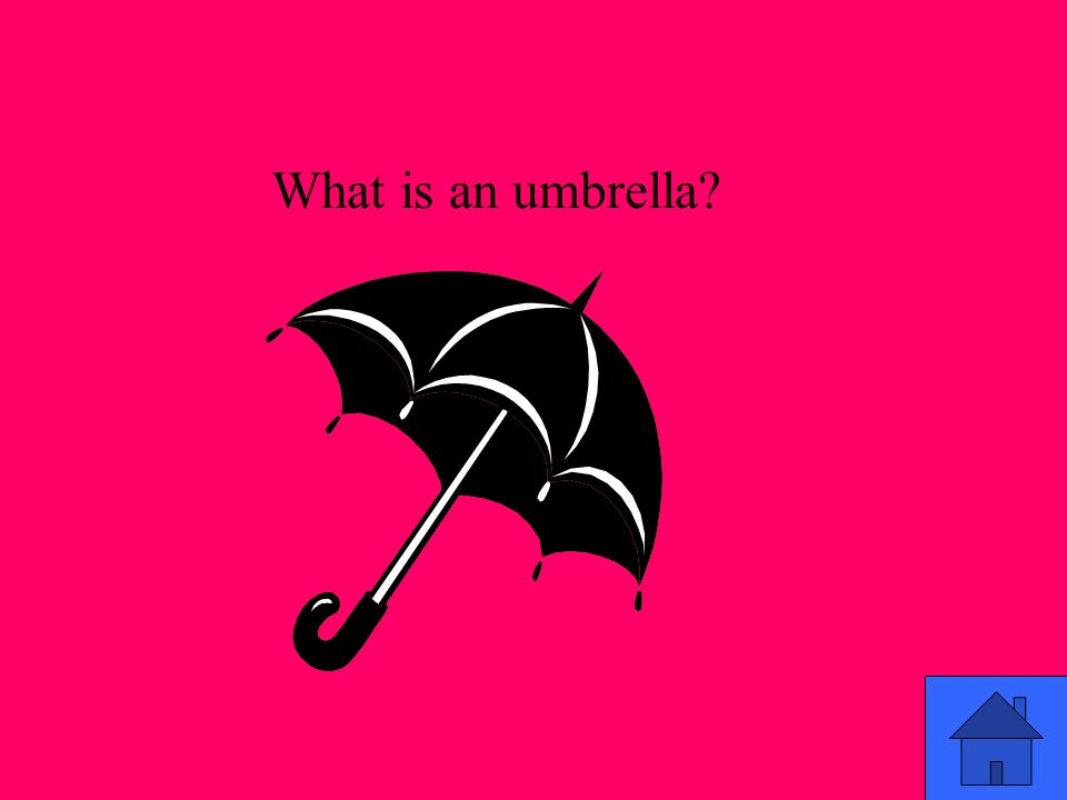 What is an umbrella?