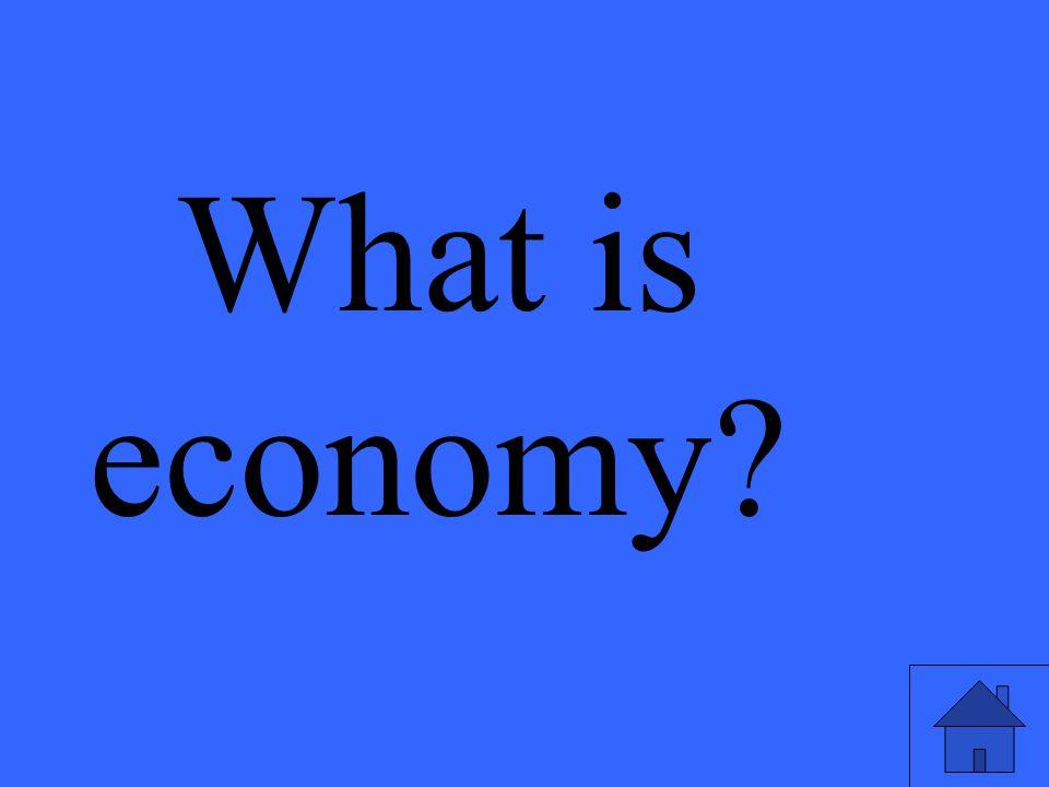 What is economy?