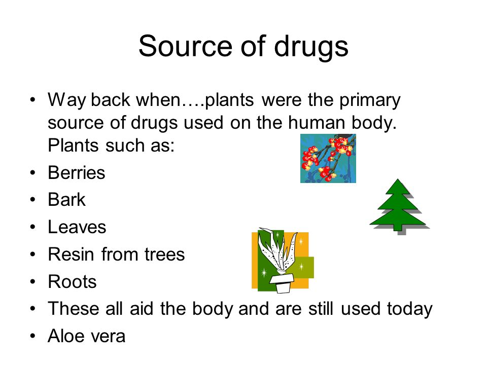 Source of drugs Way back when….plants were the primary source of drugs used on the human body.
