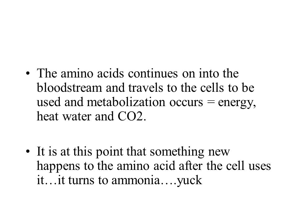 The amino acids continues on into the bloodstream and travels to the cells to be used and metabolization occurs = energy, heat water and CO2. It is at