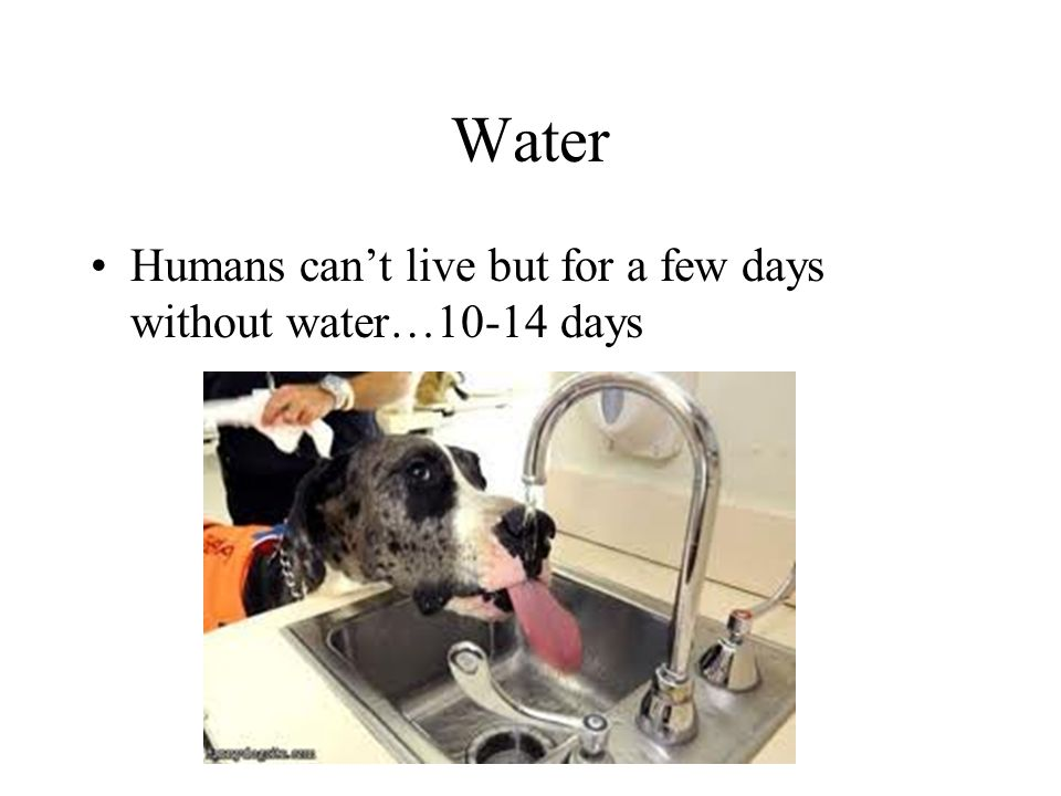 Water Humans cant live but for a few days without water…10-14 days