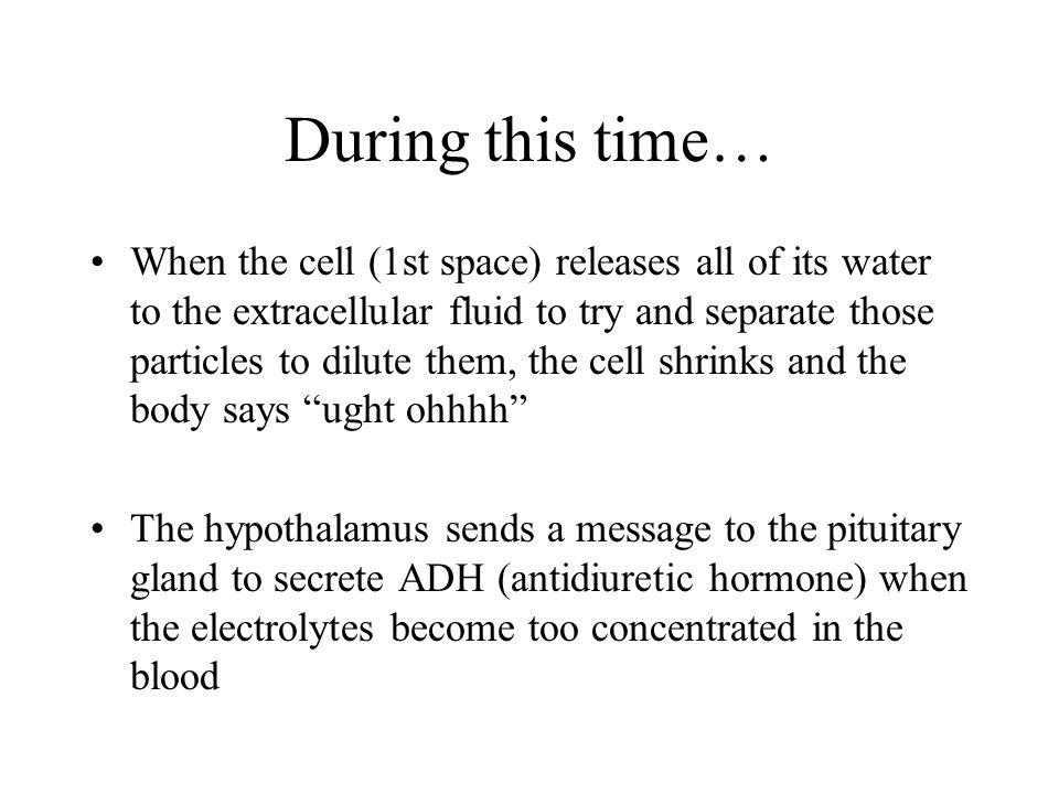 During this time… When the cell (1st space) releases all of its water to the extracellular fluid to try and separate those particles to dilute them, t