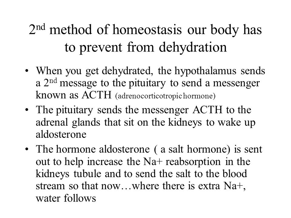 2 nd method of homeostasis our body has to prevent from dehydration When you get dehydrated, the hypothalamus sends a 2 nd message to the pituitary to