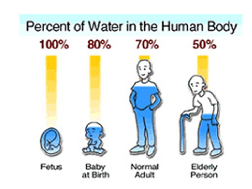 Urine Specific Gravity Normal S.G.
