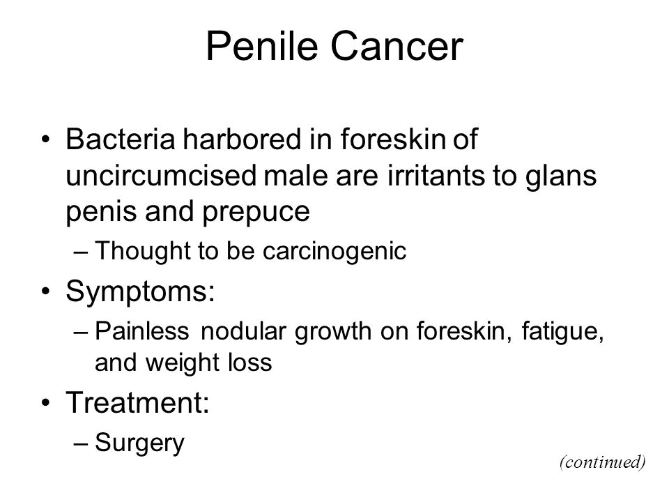 Penile Cancer Bacteria harbored in foreskin of uncircumcised male are irritants to glans penis and prepuce –Thought to be carcinogenic Symptoms: –Pain