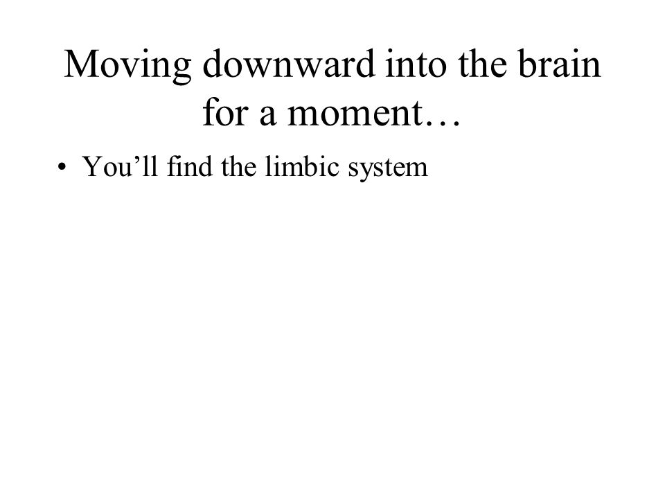 Moving downward into the brain for a moment… Youll find the limbic system