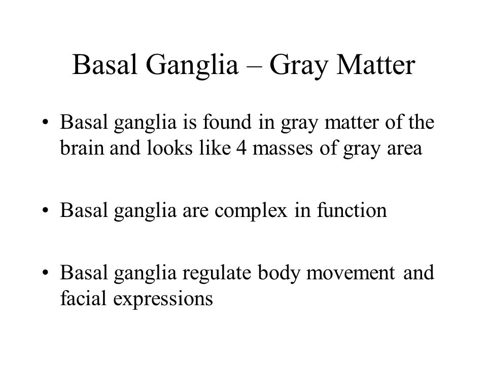 Basal Ganglia – Gray Matter Basal ganglia is found in gray matter of the brain and looks like 4 masses of gray area Basal ganglia are complex in funct