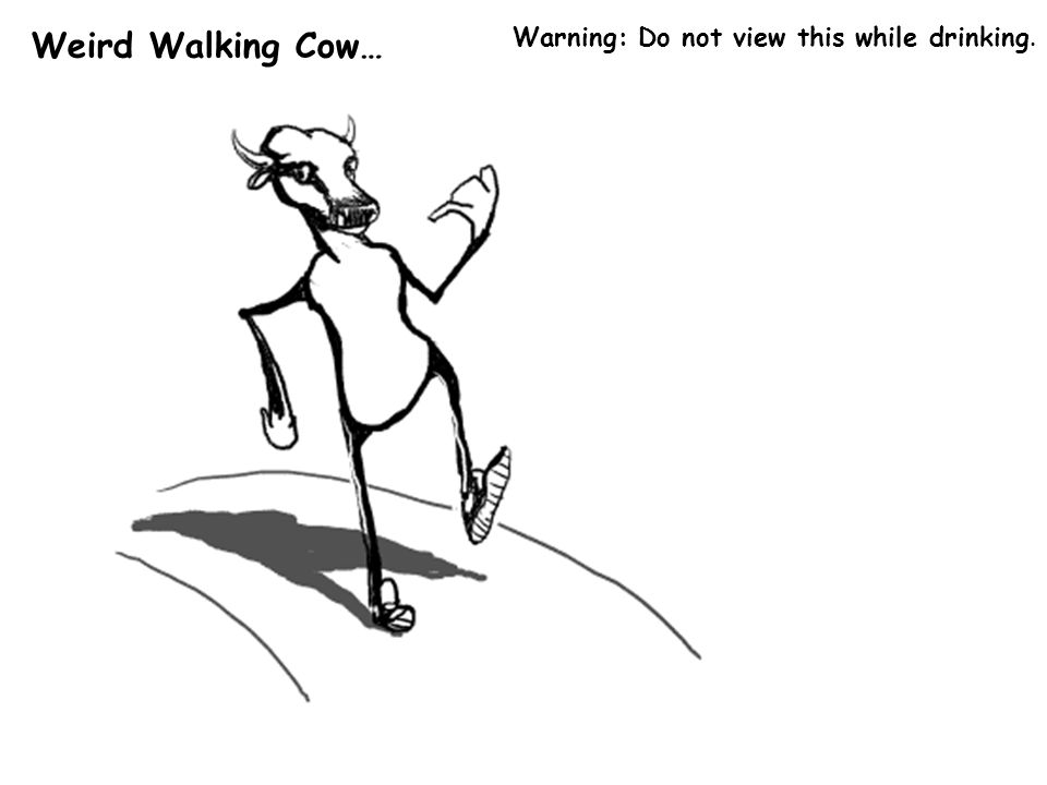 Weird Walking Cow… Warning: Do not view this while drinking.