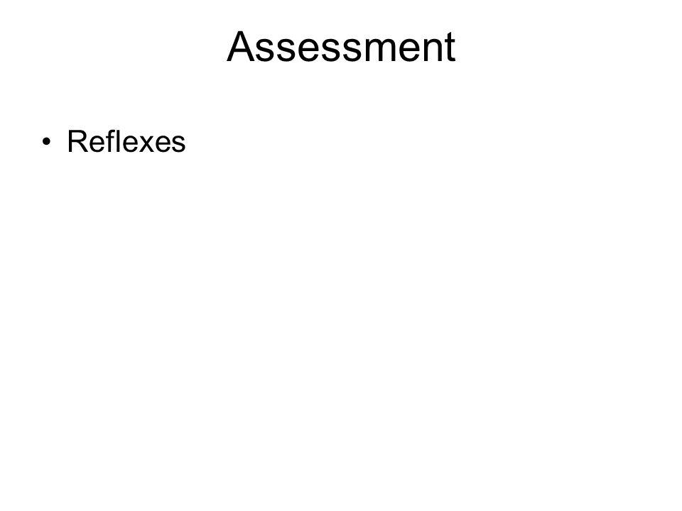 Assessment Reflexes