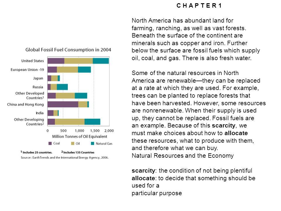 Societies allocate scarce resources in various ways.
