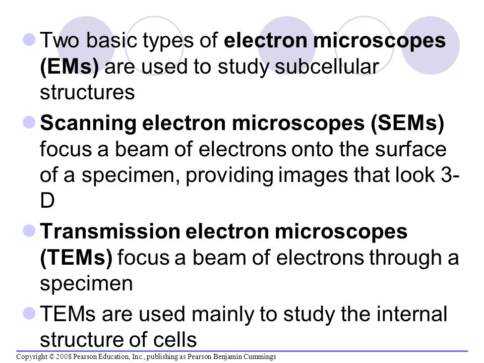 Two basic types of electron microscopes (EMs) are used to study subcellular structures Scanning electron microscopes (SEMs) focus a beam of electrons