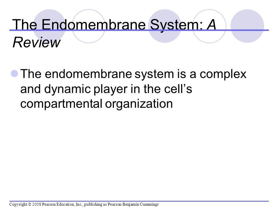 The Endomembrane System: A Review The endomembrane system is a complex and dynamic player in the cells compartmental organization Copyright © 2008 Pea