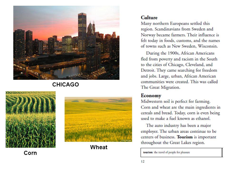 CHICAGO Corn Wheat