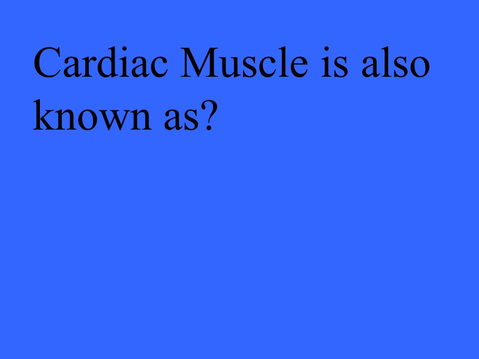 Cardiac Muscle is also known as?