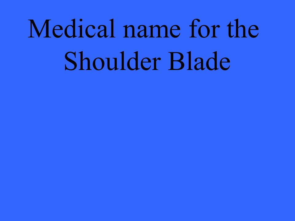 Medical name for the Shoulder Blade