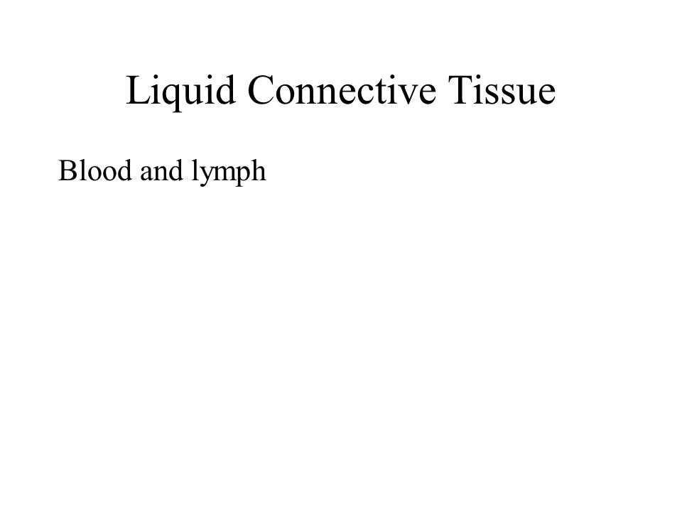Liquid Connective Tissue Blood and lymph