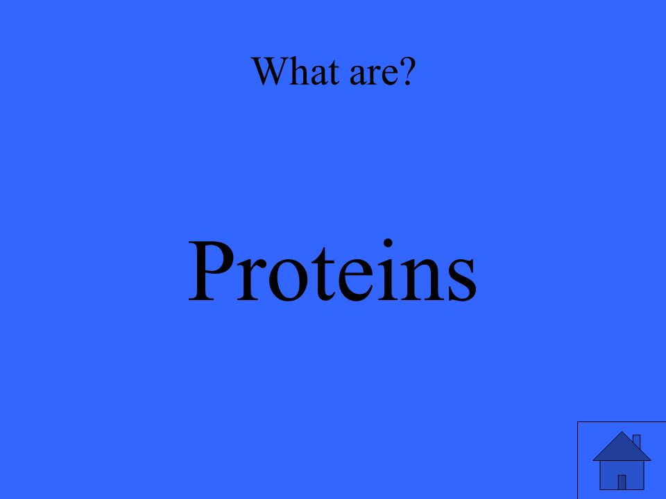 What are? Proteins