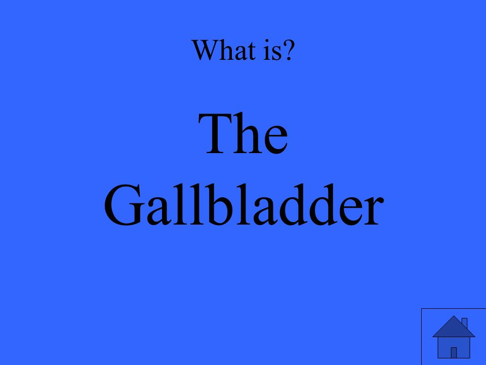 What is The Gallbladder